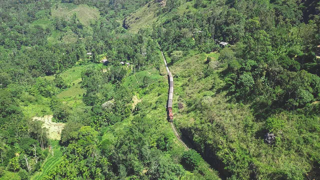 Zug fährt durch Dschungel in Sri Lanka