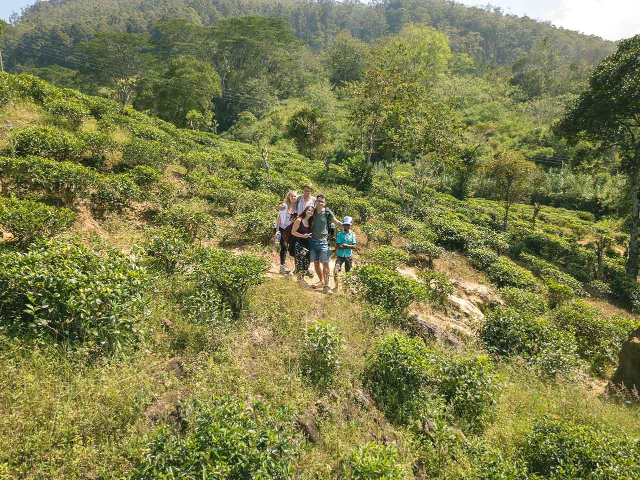 Lea, Christopher, Jasmin, Valentin und ein Singhalesischer Junge in einer Teeplantage
