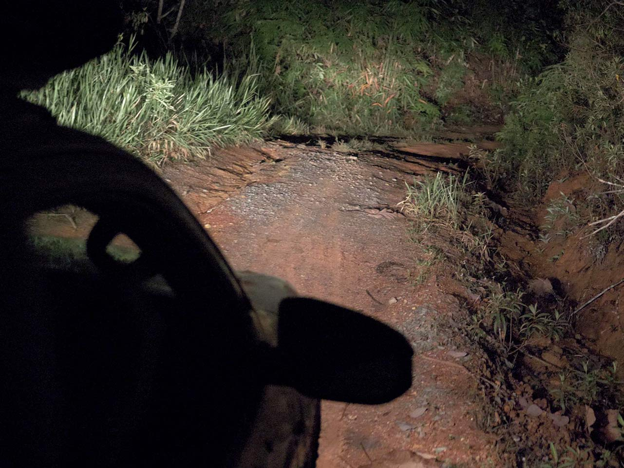 Night Safari in Kuala Tahan: Offroad mit dem Jeep