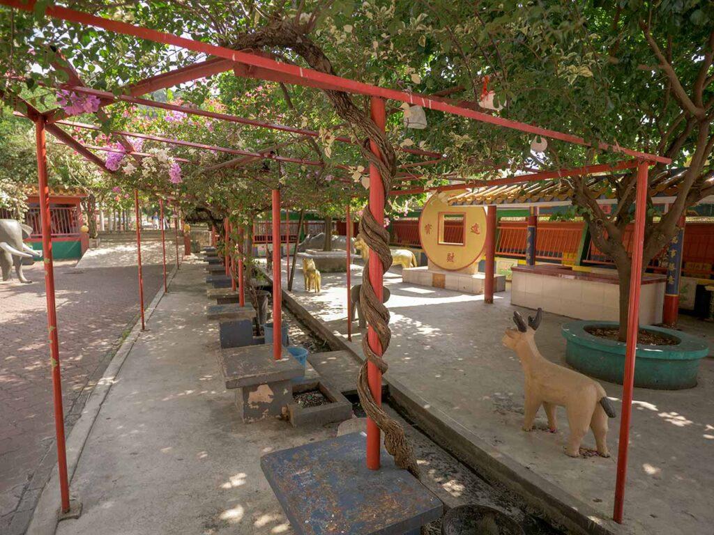 Ling Sen Tong Tempel in Ipoh: Sitzgelegenheiten im Schatten
