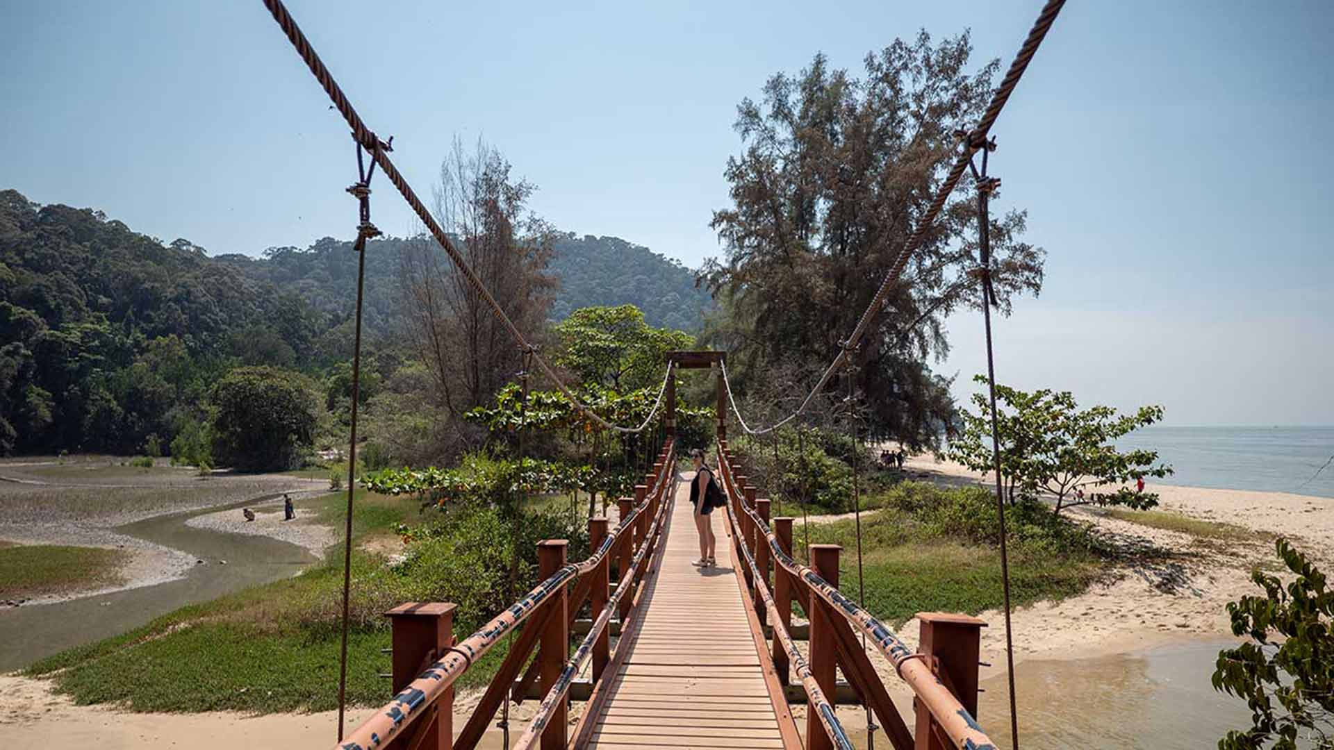 Penang Nationalpark: Das kleinste Dschungelabenteuer der Welt!