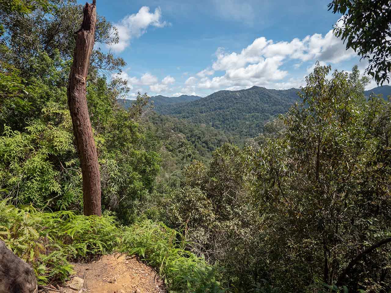Aussichtspunkt Burit Teresek im Taman Negara Nationalpark