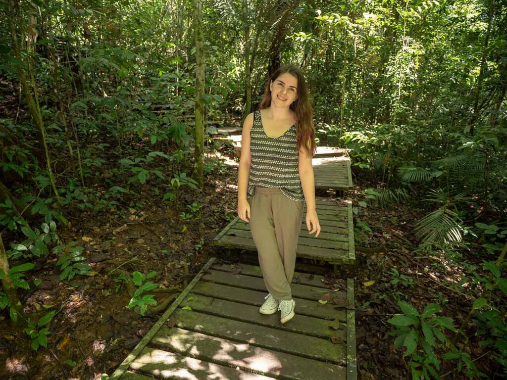 Holzstege im Taman Negara Nationalpark